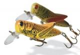 REBEL Crickhopper F73