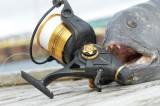 PENN FISHER SSV6500LL